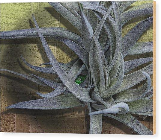 Alien Peek-a-boo Wood Print