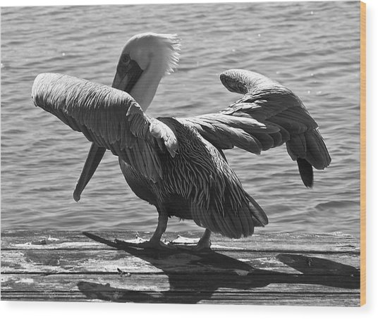 All Clear For Take Off Wood Print by Bonnes Eyes Fine Art Photography