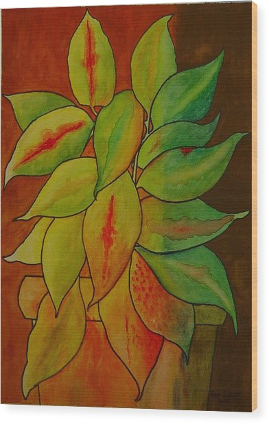 All Mixed-up  Wood Print by Ron Sylvia