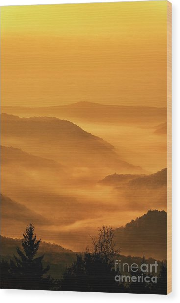 Allegheny Mountain Sunrise Vertical Wood Print