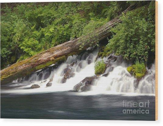 Allen Springs On The Metolius River Wood Print