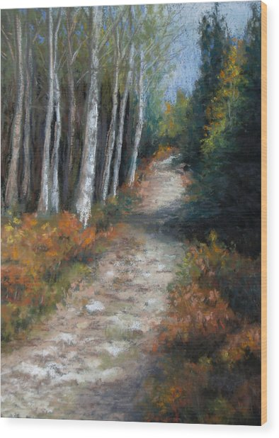 Almost Autumn Wood Print by Susan Jenkins