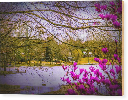 Almost Spring - Landscape Wood Print by Barry Jones