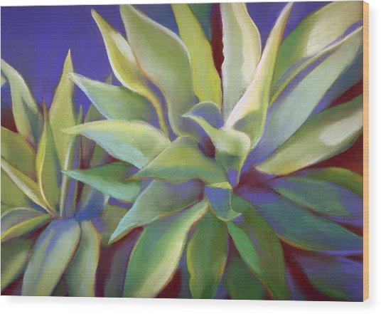 Aloe Plants In Big Sur Wood Print