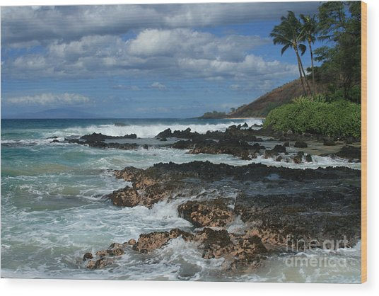 Aloha Island Dreams Paako Beach Makena Secret Cove Hawaii Wood Print