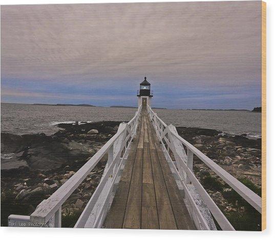 Along The Boardwalk Wood Print