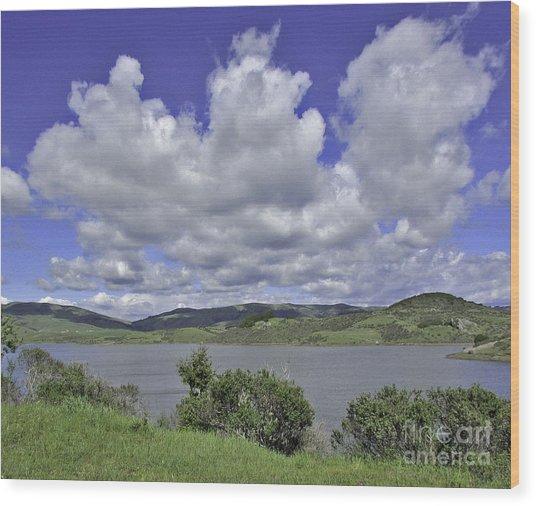 Along The Coast Highway Wood Print