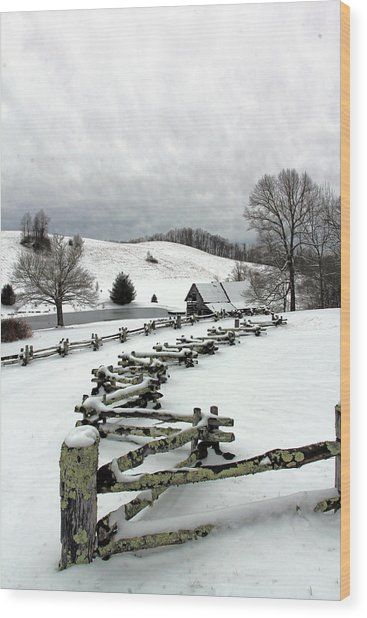 Along The Locust Rails In Winter Wood Print