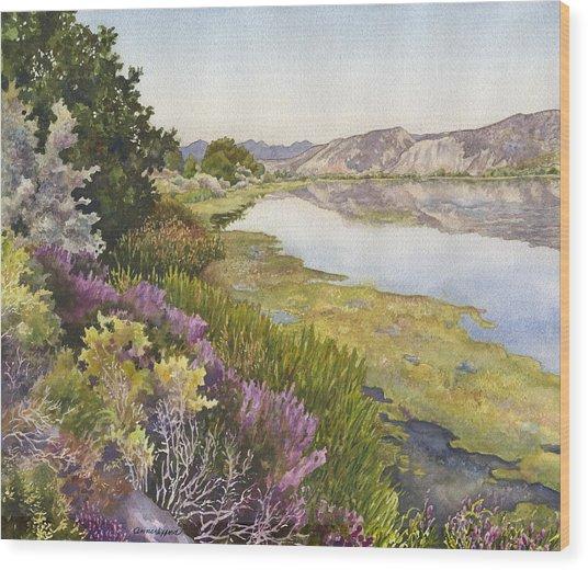 Along The Oregon Trail Wood Print
