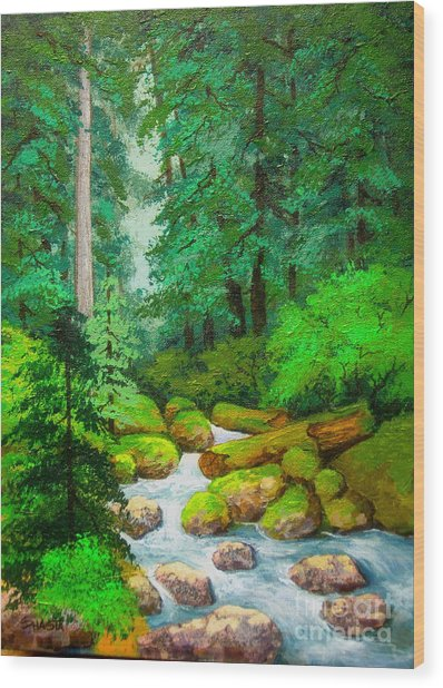 Along  The  Rogue Wood Print by Shasta Eone