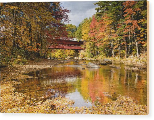 Along The Swift River Wood Print