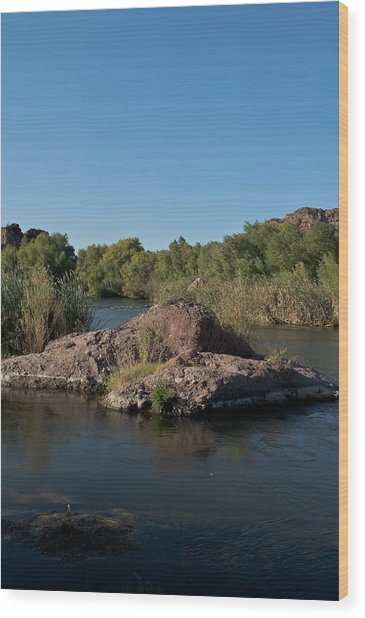 Along The Verde River 3 Wood Print by Susan Heller