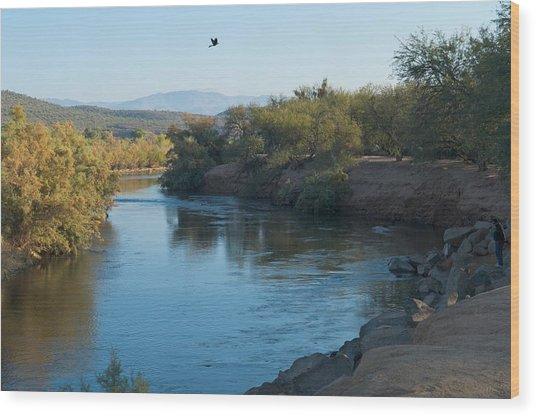 Along The Verde River 7 Wood Print by Susan Heller