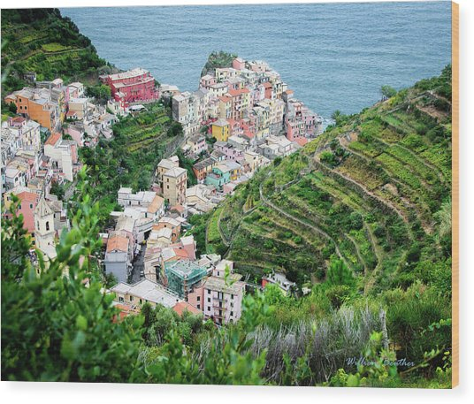 Along The Via Del Amore Wood Print