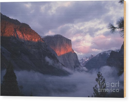 Alpen Glow On El Capitan Wood Print by Stan and Anne Foster