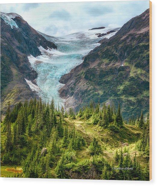 Alpine Glacier 40x40 Wood Print
