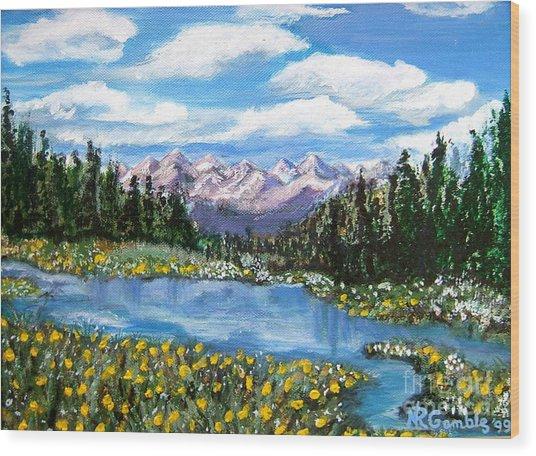 Alpine Lake Colorado Usa Wood Print by Nancy Rucker