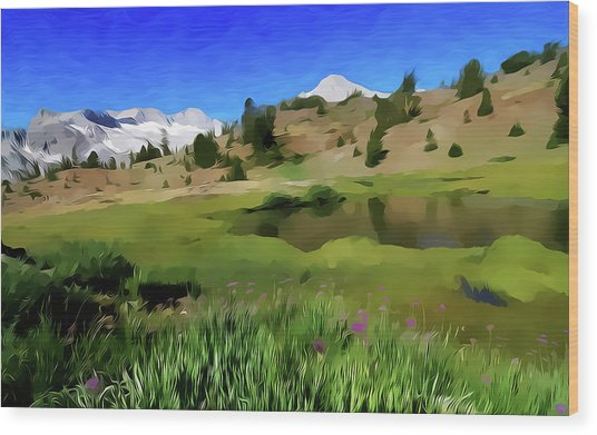 Alpine Meadow By Frank Lee Hawkins Wood Print