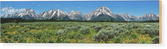 Alpine Meadow Teton Panorama II Wood Print