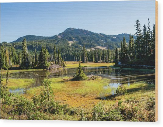 Alpine Meadows - 1 Wood Print