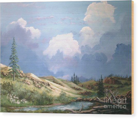 Alpine Vale Wood Print by John Wise