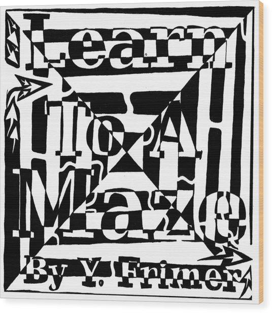 Alternate Book Cover Maze Wood Print by Yonatan Frimer Maze Artist