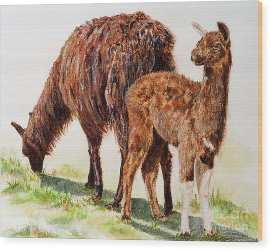 Altiplano Natives Wood Print by Monica Carrell