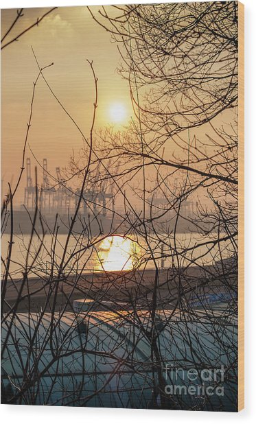 Altonaer Balkon Sunset Wood Print