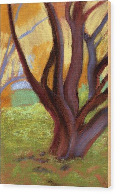 Alvarado Park Wood Print