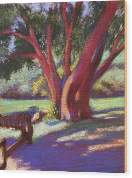 Alvarado Wildcat Canyon Wood Print