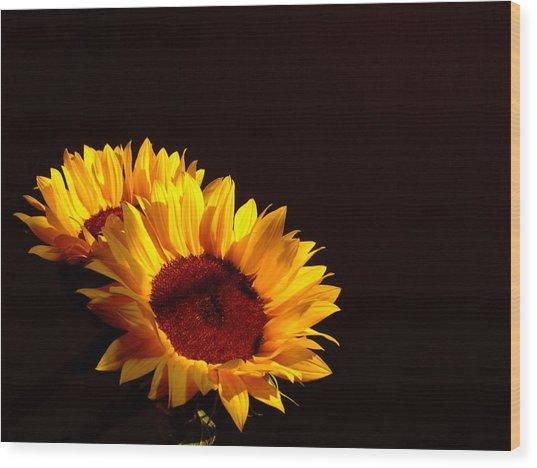 Always Into The Sun Wood Print by Juana Maria Garcia-Domenech