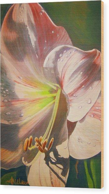 Amarylis Wood Print by Tara Milliken