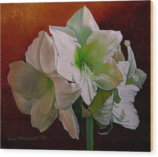 Amaryllis 2 Wood Print by Doug Strickland