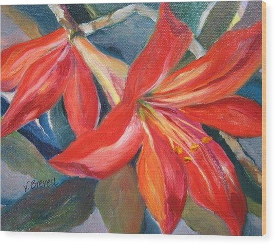 Amaryllis In Spring Wood Print