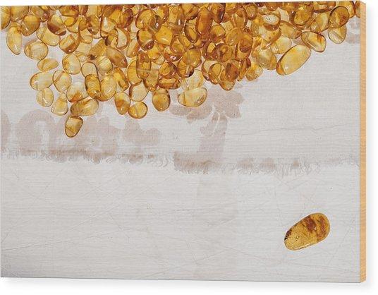 Amber #7863 Wood Print