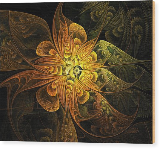 Amber Light Wood Print