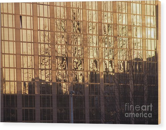 Amber Window Wood Print