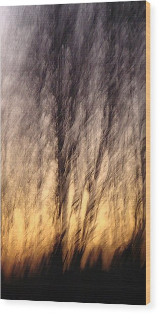 Ambience Wood Print by Melody Dawn Germain