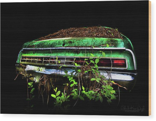 Amc Javelin  Wood Print