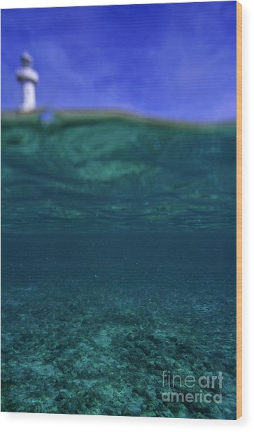 Amedee Lighthouse Island Seen From Underwater Wood Print by Sami Sarkis