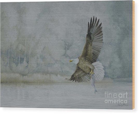 American Bald Eagle Wood Print