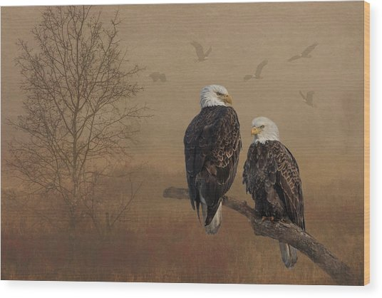 American Bald Eagle Family Wood Print