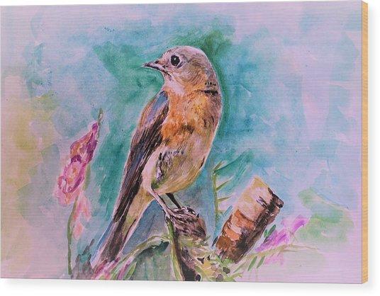 American Blue Bird Wood Print