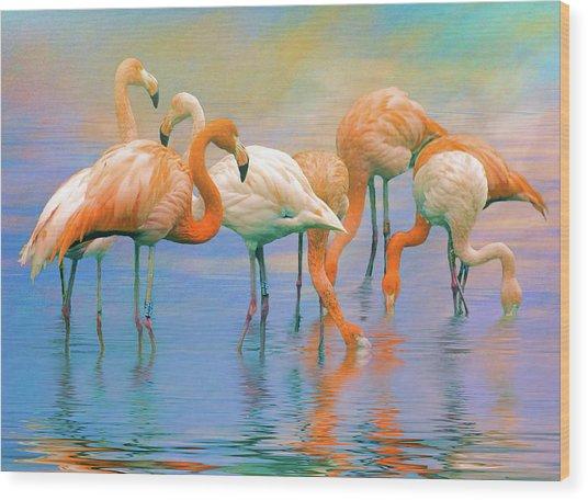 American Flamingos Wood Print