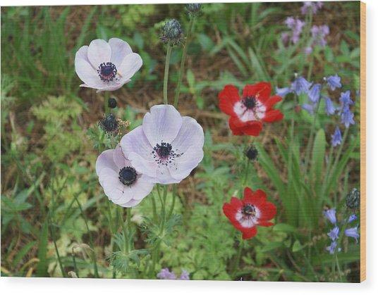 American Flowers Wood Print