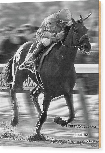 American Pharoah And Victor Espinoza Win The 2015 Belmont Stakes Wood Print