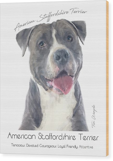 American Staffordshire Terrier Poster 2 Wood Print by Tim Wemple