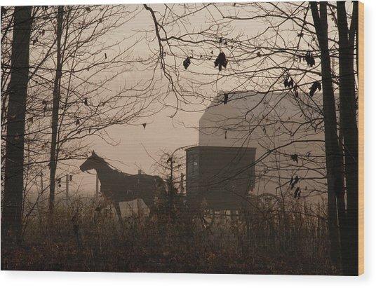 Amish Buggy Fall Wood Print