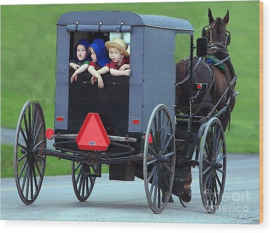 Amish Country Tour Wood Print