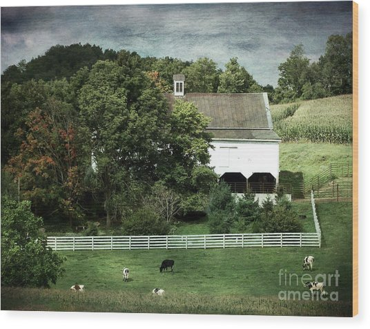 Amish Farm In The Fall With Textures Wood Print